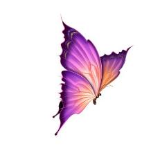 Kosmetika Jitka Logo